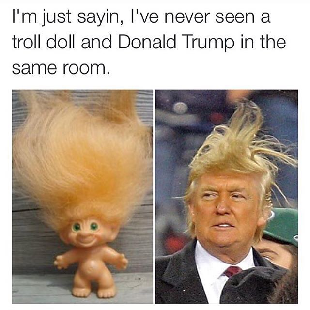 Donald Trump Hair Meme | trum clinton meme
