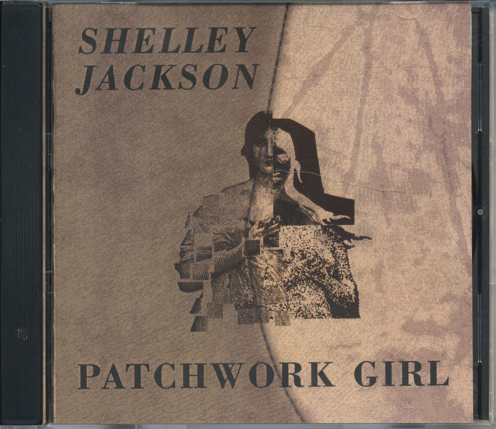 shelley jacksons patchwork girl essay Shelley jackson's patchwork gal patchwork girl, a hypertext vision sewn jointly by shelley jackson, is a tale and a merchant account of the creation of a monster and the partnership the mind.